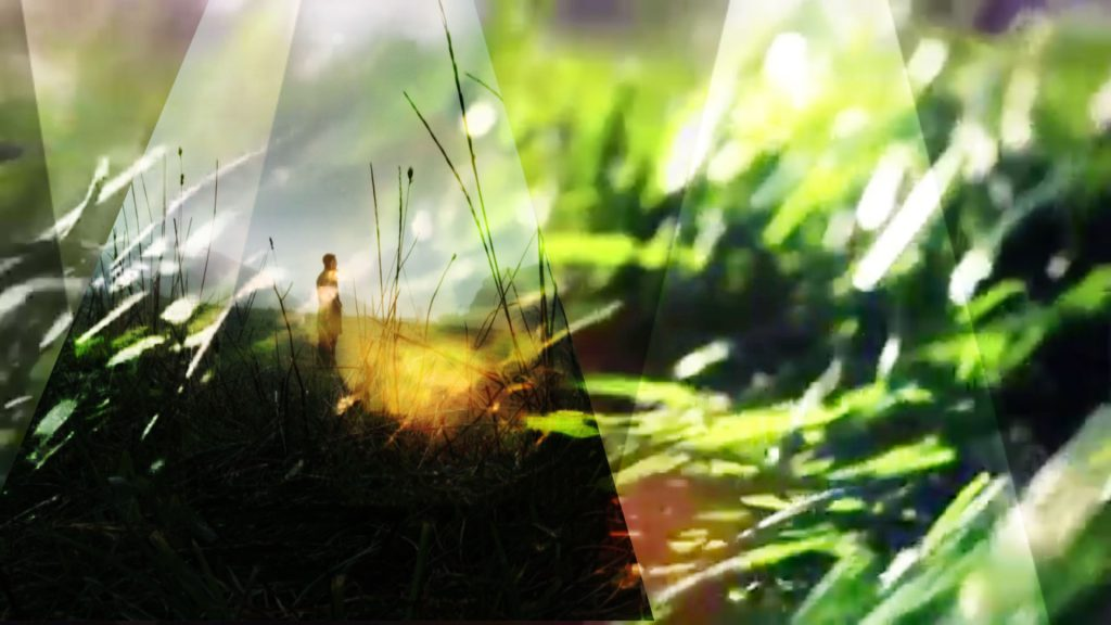 Frame from original mood board featuring slices of layered footage rolling over grass shot. Background imagery taken from Chasing Shakespeare.